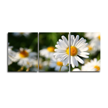 Laeacco Abstract 3 Panel White Flower Canvas Paintings Wall Art Garden Posters and Prints Pictures Home Living Room Decoration
