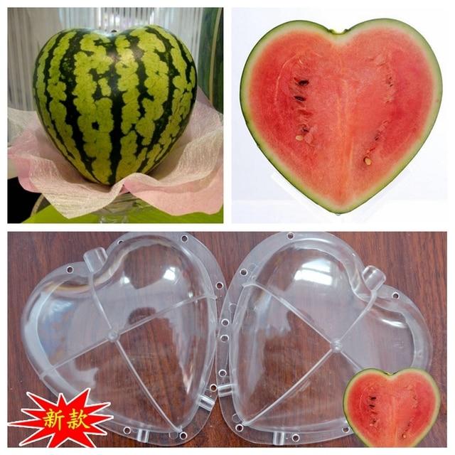 whism tamaño grande de plástico claro corazón cuadrado sandía