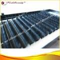 Envío gratis Brillante imitación de visón pestañas de extensión de 12 líneas corea fibra de PBT de alta calidad puede ayunar entrega