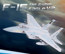 FMS Model F15 Eagle 64mm RC Jet V2 FMS010