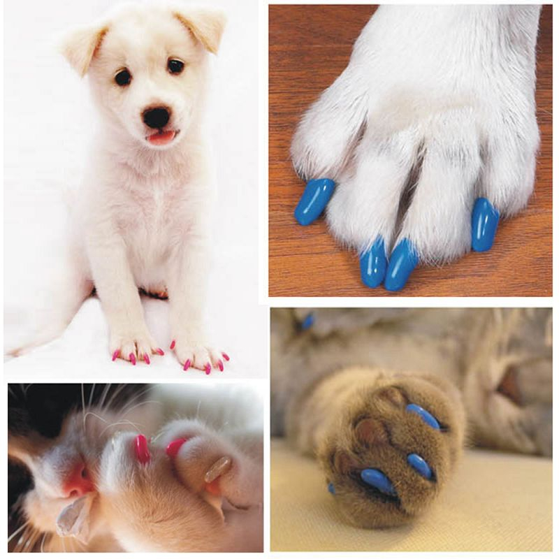 Colorful Soft Rubber 20 Pcs Pack Dogs Cats Kitten Paw