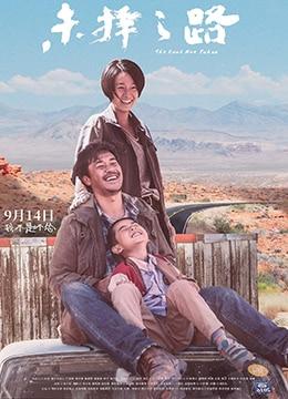 《未择之路》2018年中国大陆剧情,犯罪电影在线观看