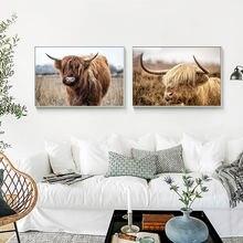Настенные картины яка в скандинавском стиле с изображением коровы