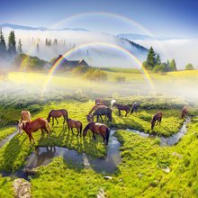 Laeacco Natural Wonderland Grassland Rainbow Horse Farm Creek View Photo Backgrounds Photography Backdrops For Photo Studio(China)