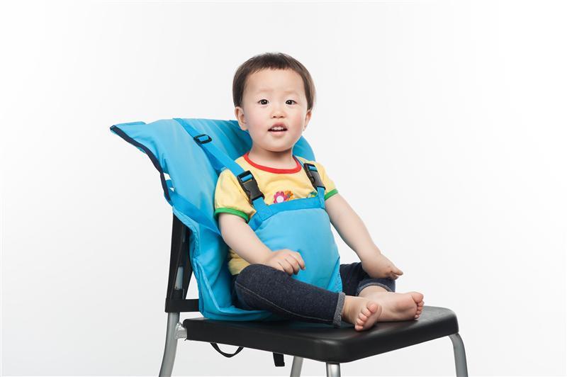 ... Portable Baby Feeding Chair Harness ...  sc 1 th 183 & Portable Baby Feeding Chair Harness - thebabiesstore