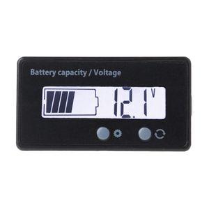 12V/24V/36V/48V LCD Acid Lead