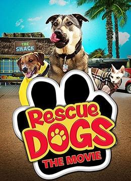 《救援狗》2016年美国喜剧,家庭电影在线观看