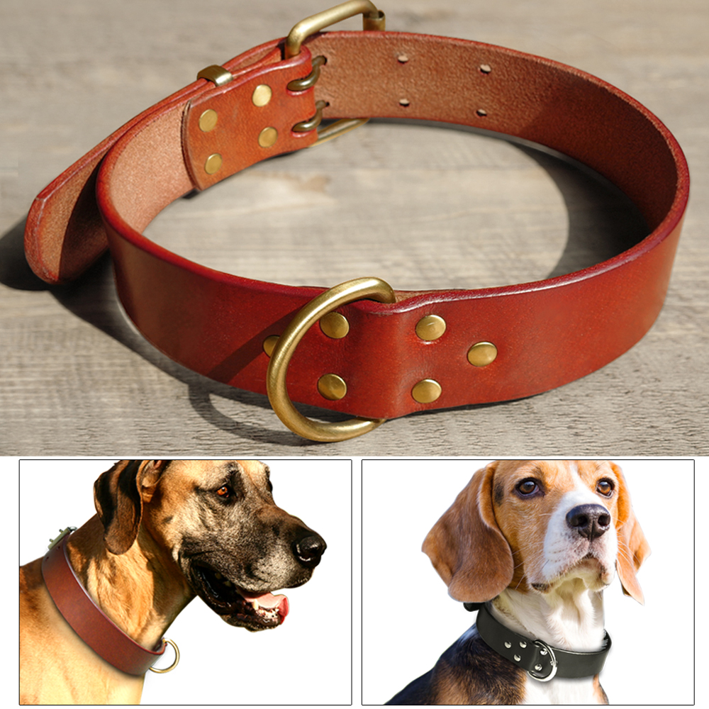 Genuine Leather Dog Collars with Durable D ring & Gold Buckle Black Brown S M L XL