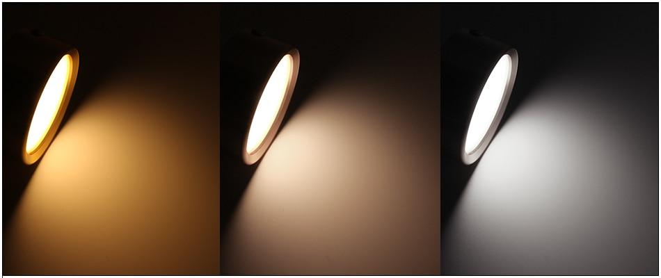 HTB1dLSSVHPpK1RjSZFFq6y5PpXa5 LEDIARY 220V LED Ceiling Light Surface Mounted Ceiling Lamp 3W 5W 7W 10W 3000K 4000K 6000K Indoor Living Room Book Rack Lighting