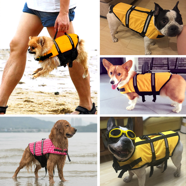 Golden Retriever Labrador Small Big Dog Life Jacket Safety Medium