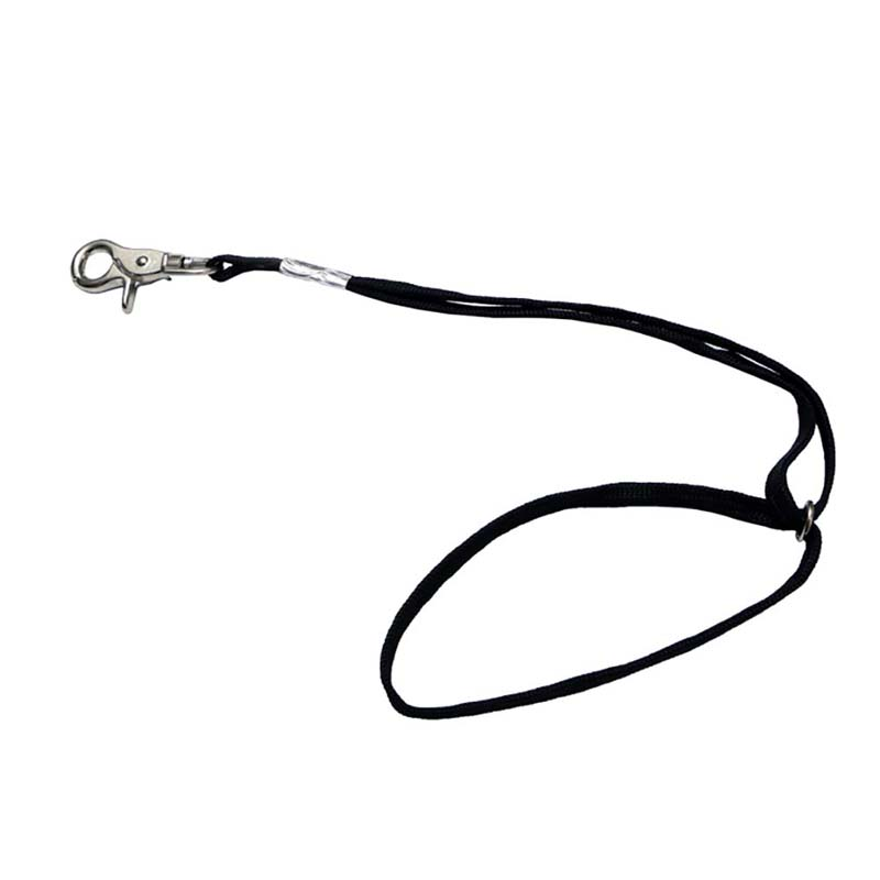 45cm <font><b>Dog</b></font> Pet Cat Animal Noose Loop Lock Clip Rope For Grooming <font><b>Table</b></font> Arm Bath image