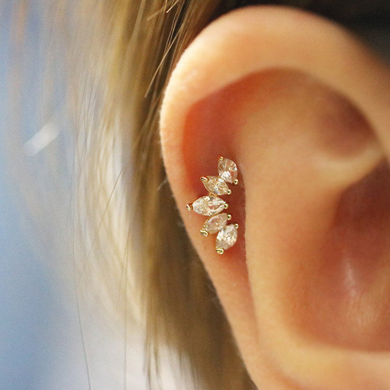 Detail Feedback Questions About Crown Cartilage Earring Tragus