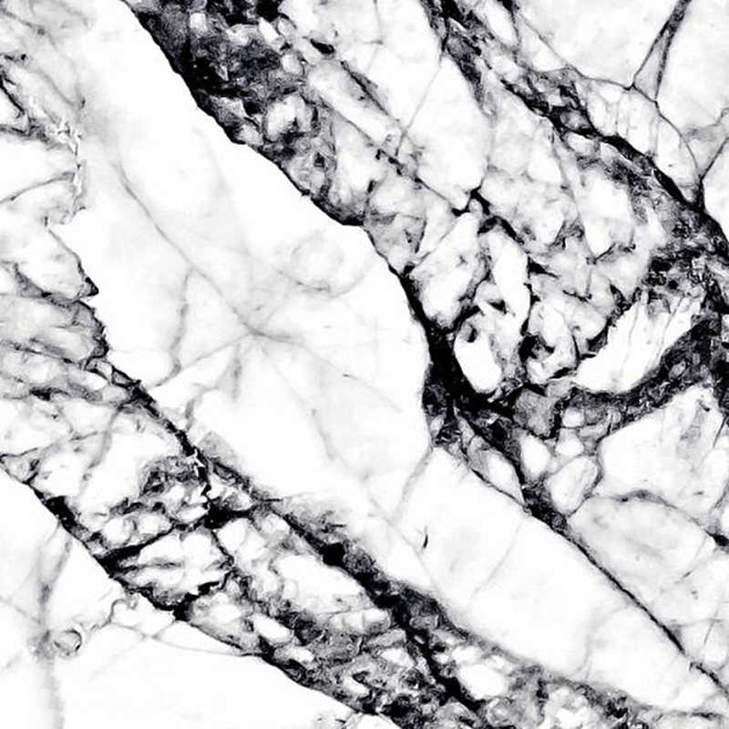 Abstract Tree Branch Art Marble Print Modern Wall Picture , Black and White Marbel Texture Art Canvas Prints Poster Wall Decor