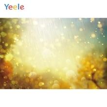 Yeele Wallpaper Sunshine Bokeh Gold Light Nice Decor Photography Backdrop Personalized Photographic Backgrounds For Photo Studio