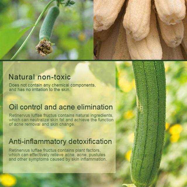 Natural Loofah Bath Sponge Body Scrub Exfoliation SPA Beauty Bath Sponge 4