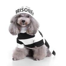 Комплект одежды для собак на Хэллоуин, костюм для собак в виде Поха, зимний костюм для кошек, маленьких собак, щенков, лучший подарок для домашних собак
