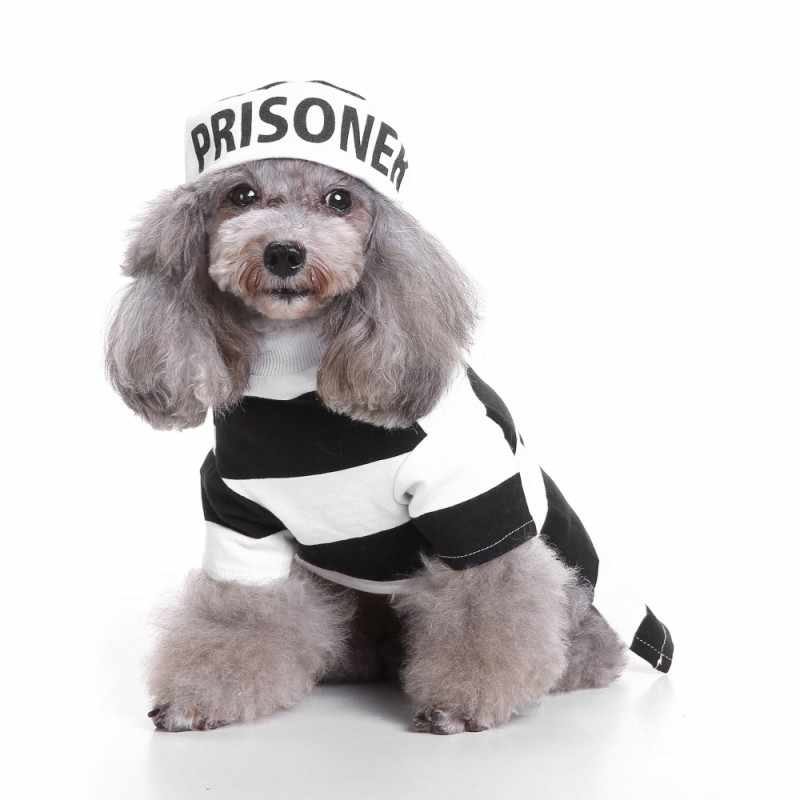 Halloween Dog Clothes Set Prison Pooch Dog Costume with Hat Winter Cat Small Dog Puppy Suit Best Gift for Pet Dogs