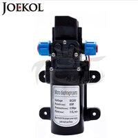 DC 12V 24V 60W 80W High Pressure Diaphragm Water Pump Water Pump With Automatic Pressure Switch