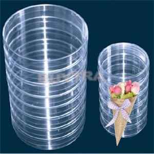 Kicute 10Pcs Plastic Sterile Petri Dishes with Lids 55mm For Lab Plate Bacterial Yeast Medical Biological Scientific Supply