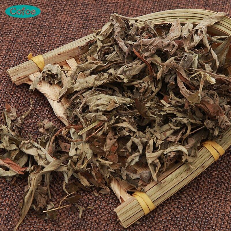 Cofoe Folium Artemisiae Argyi Pé Banho Banho de Pé Absorver Secagem Absinto Dissipar Frio Limpeza Úmida Aicao Aiye Medicina Chinesa