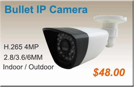4MP IP Camera 60-1S
