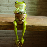 New Creative Frog Succulent Pot Garden Decoration Animal Resin Display Plant Potted Gifts Decoration Crafts Figurines Miniatures