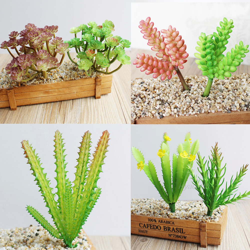 8 kinds of plant garden succulent grass desert artificial for Garden arrangement of plants