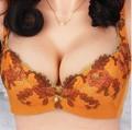 Бесплатная доставка пион вышитые B кружка росту бюстгальтер G лунь классический Kuxury принцесса пион вышивка росту секс бюстгальтеры для женщин