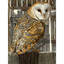 Yikee Алмазная картина сова мозаика алмазная вышивка k812