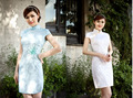 Free shipping Blend Cotton Elegant Vintage Qipao National Costume Women Sexy Floral Chinese Cheongsam Dress 2 style