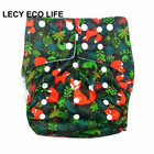 Lecy Eco Life 5 digital print 3-8 years big kids cloth diaper, reusable inconvenience pants for youth tenners,bed wetting diaper