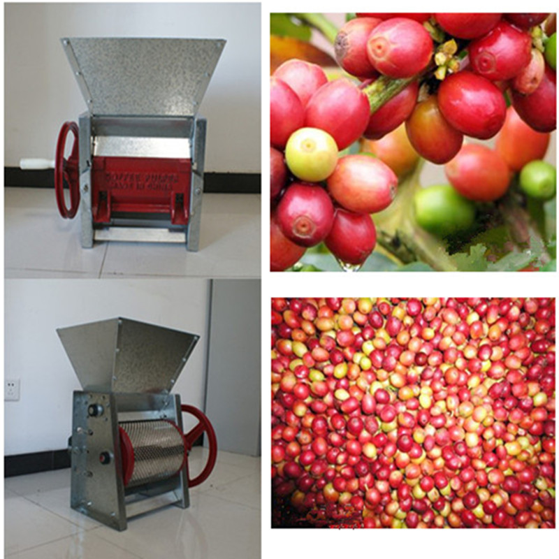 Small model home use hand coffee and cocoa beans peeling machine easy to operate mini electric coffee sheller pulper manual fresh coffee beans peeling pulping pulper machine cocoa bean extractor coffee sheller