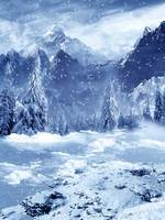Custom washable wrinkle free snow mountain scenic photography backdrops for stage photo studio portrait backgrounds HG 203