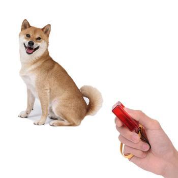 Nowy zakwalifikowany dropshipping Dog Pet Clicker Clicker trening posłuszeństwo zwinność pomoc szkoleniowa pasek na rękę dropshipping #30 tanie i dobre opinie Szkolenia Clickers Other