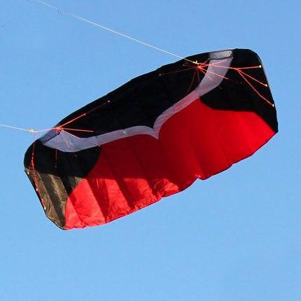 Cerf-volant Parafoil double ligne professionnel 2m avec ligne de tresse de voile Kitesurf plage de sport - 2
