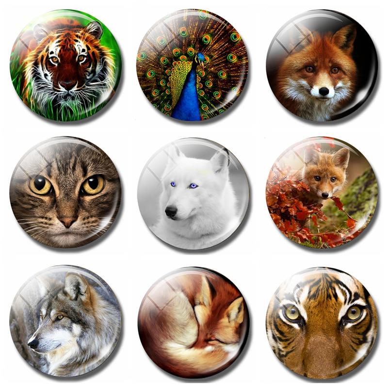 3D Creative Lovely Cat Animal Glass Fridge Magnet Kitchen Decor Diameter 30mm