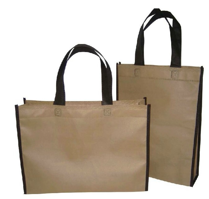 MOQ 50 PCS non woven shopping bag for promotion blank style ...