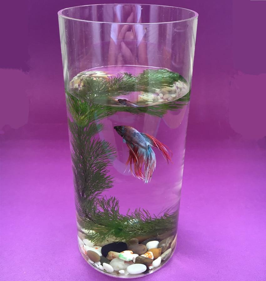 Compare prices on fish bowl decorations online shopping for Aquarium vase decoration