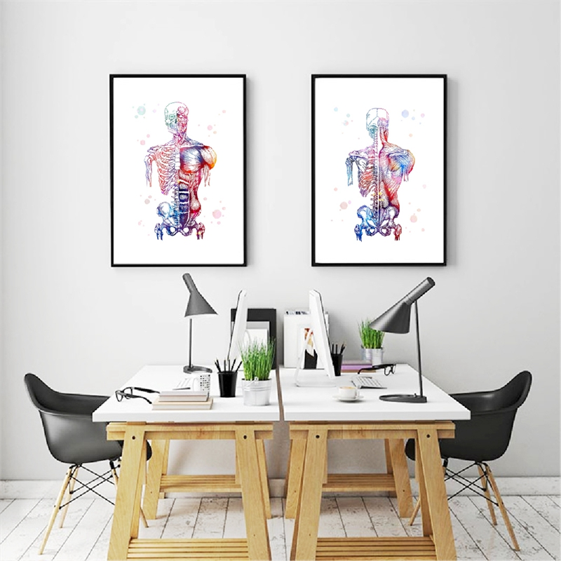 Watercolor Human Muscles Print