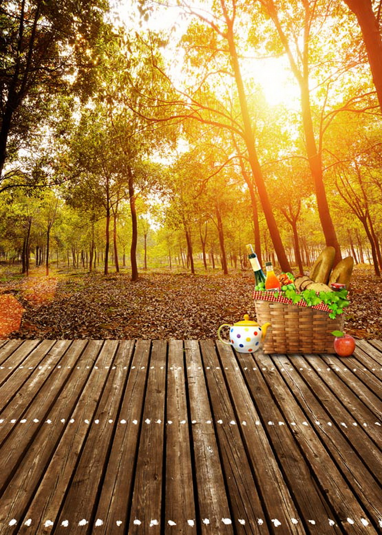 Autumn picnic backgrounds for outdoor shooting photography backdrops for photo studio photographic background camera fotografia садовая химия is far from
