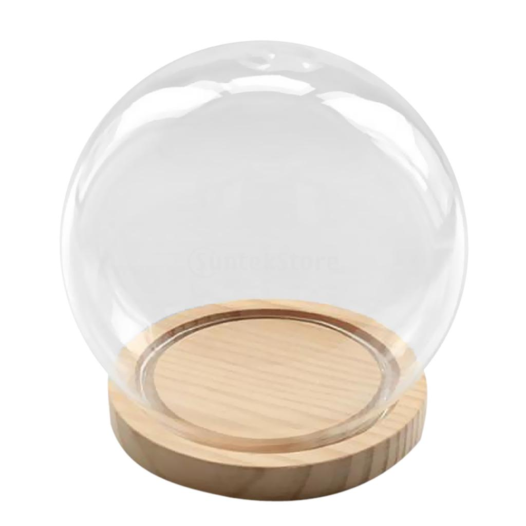 Copertura Giardino Fai Da Te a forma di palla di vetro di copertura micro paesaggio fata