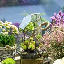 Irregular Tabletop Succulent Plants Glass Geometric Terrarium Box Planter Window Sill DIY Flower Pot Moss Ferns Miniature Bonsai