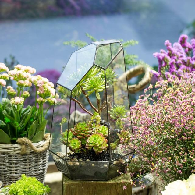 Exceptional Irregular Tabletop Succulent Plants Glass Geometric Terrarium Box Planter Window  Sill DIY Flower Pot Moss Ferns