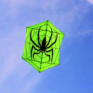 Free shipping high quality large kite Hexagonal kite spider kite fabric nylon ripstop with kite reel line flying outdoor toys