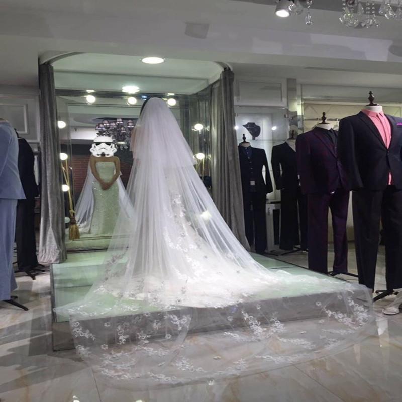 Trailing-Bridal-Veil-Fancy-Appliques-Wedding-Veil-Grace-Wedding-Accessories (3)