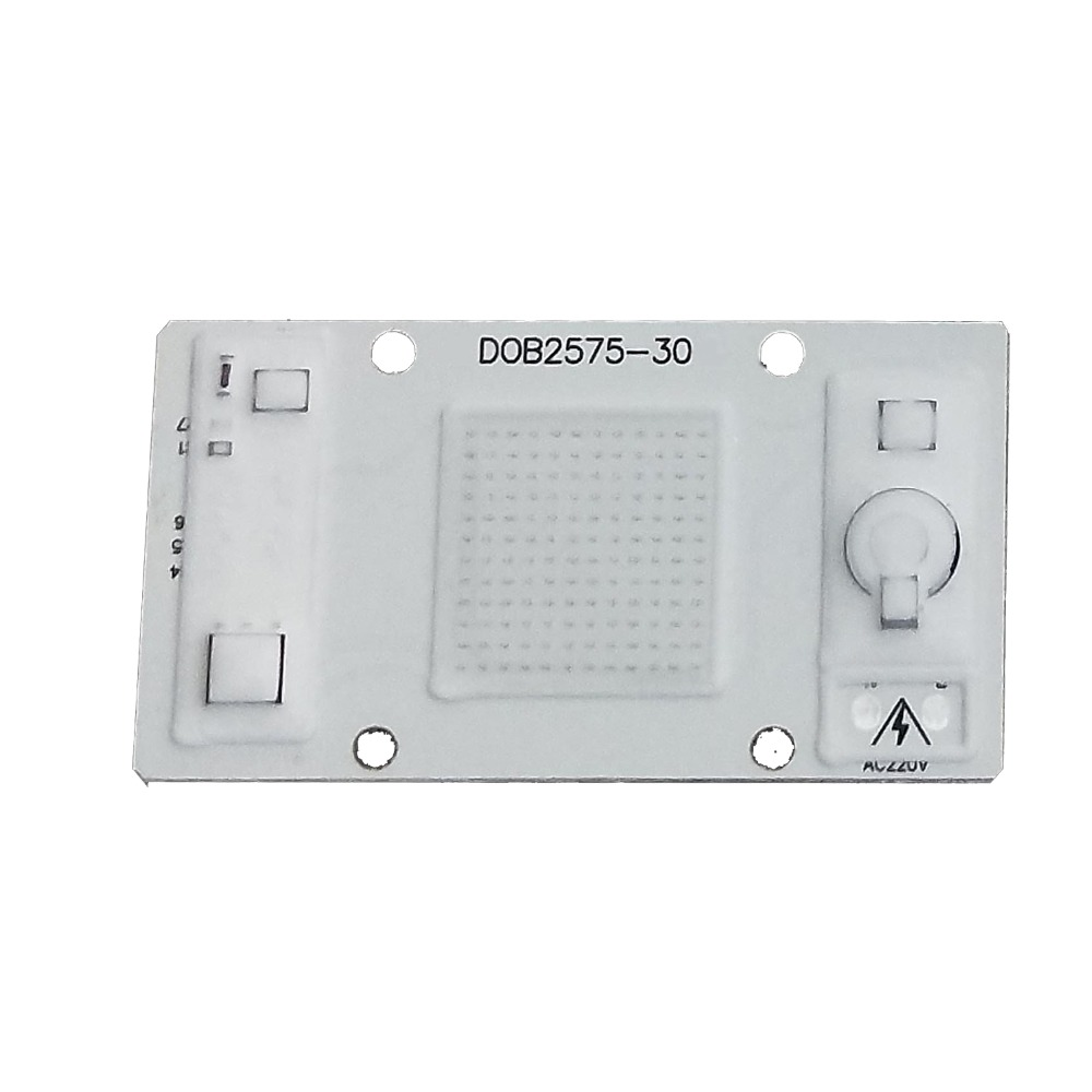 Hot Promotion AC Cob Led Chip 20W 220Vac No Driver Cob Chip Warmwhite For Led Floodlight