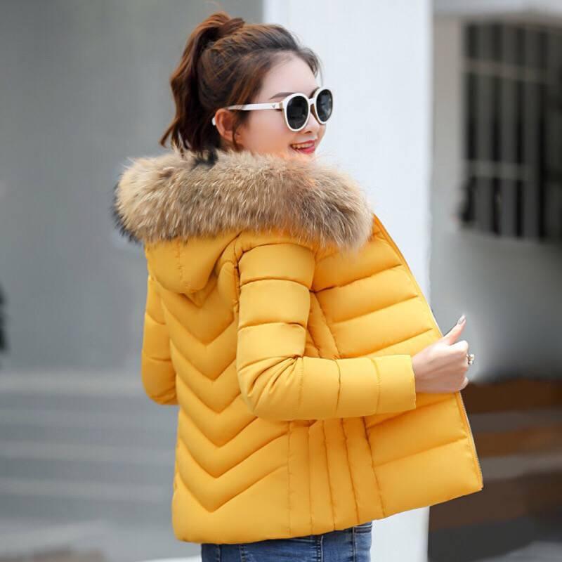 JKKUCOCO Hot Winter Jacket Warm Well Cotton jacket Hair Hooded jackets Women Coats Slim Zipper Winter