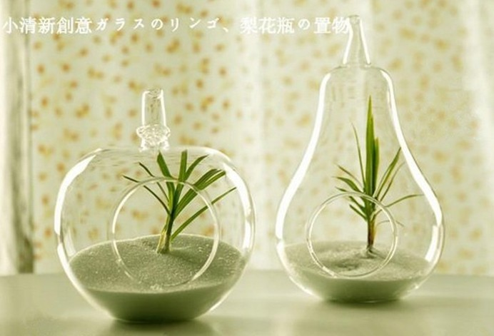 home decor glass vase decoration home decoration transparent glass flower vase apple pear shaped creative decoration