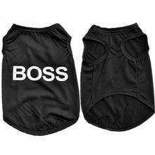 "Pretty ""Boss"" Sphynx Cat Vest"