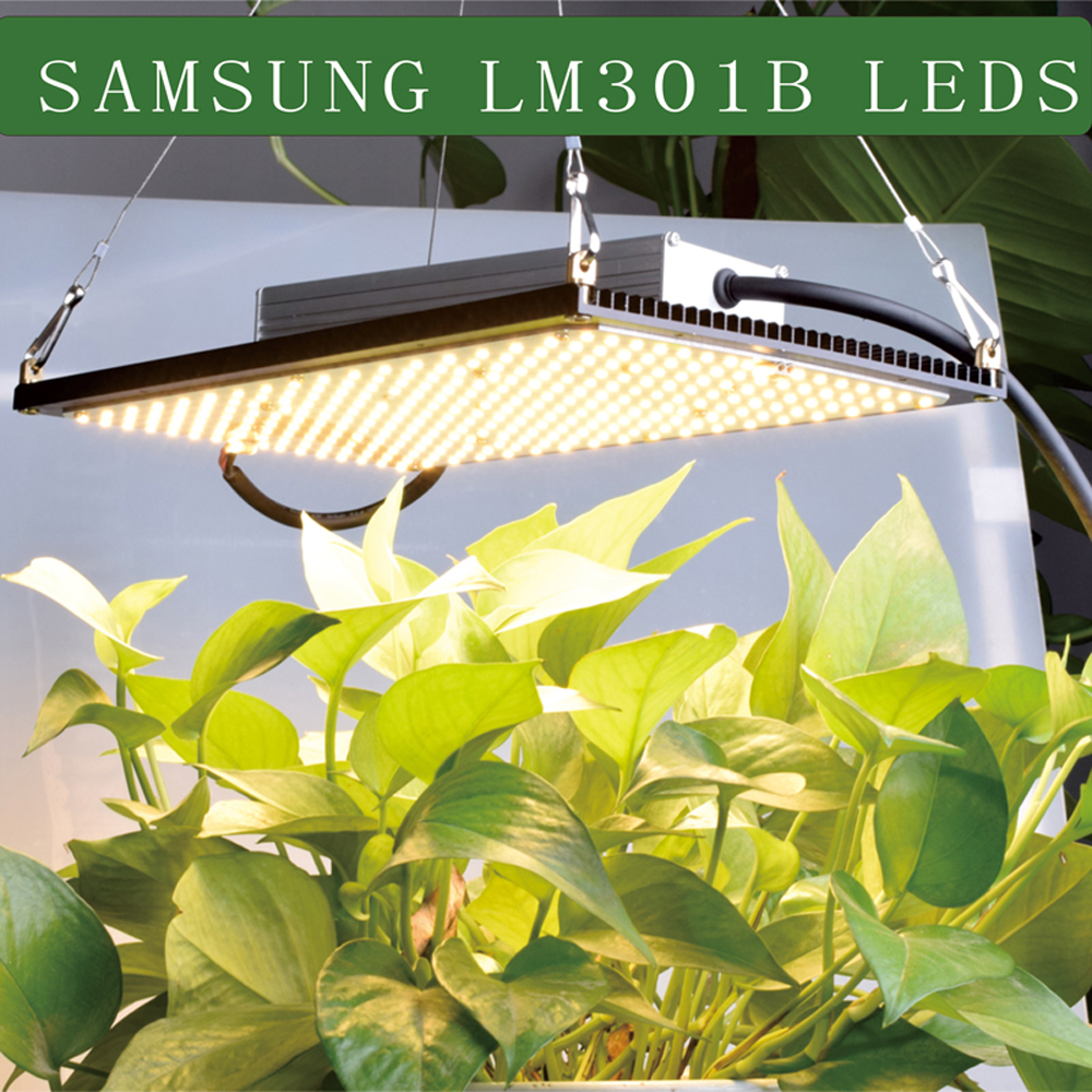 Led grow light quantum <font><b>board</b></font> <font><b>LM301B</b></font> 288Pcs Chip Full spectrum 240w <font><b>samsung</b></font> 3000K with Meanwell driver image